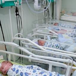 Record di nascite a Vanadzor