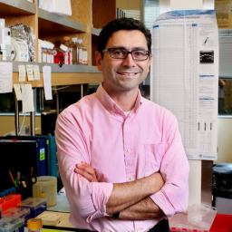 Ardem Patapoutian vince il Nobel per la medicina